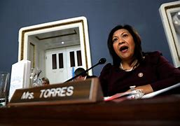California 35th District House Representative Norma Torres (D)