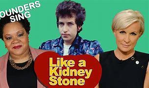LIKE A KIDNEY STONE — by Founders Sing feat. Bob Dylan and Journalists